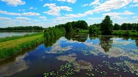 Flug über dem Teich Reflexion des Himmels im Wasser stock footage