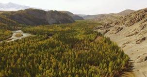 Flug über den Bergen altai sibirien Fliegen über den Fluss Forest Valley 4k stock video footage