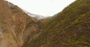 Flug über den Bergen altai sibirien Forest Valley 4k stock footage