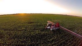 Flug über der Maschine, die das Maisfeld wässert stock footage