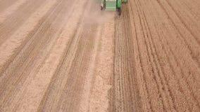 Flug über einer Erntemaschine auf einem Weizen-Feld Schattenbild des kauernden Geschäftsmannes stock video footage