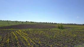Flug über landwirtschaftlichen Ackerlandfeldern stock video footage