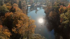 Flug über See im Herbstpark stock footage