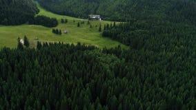 Flug über Wald in den Bergen stock video