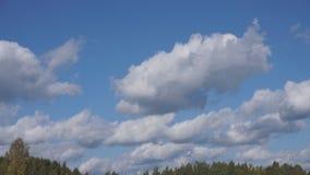 Flug über Wolken, Schleife-fähige Animation stock video footage