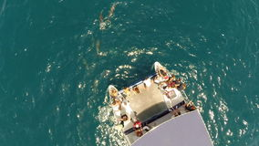 Flug auf Katamaran zwischen Delphin stock video