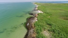 Flug entlang der Küstenlinie von einer schönen grünen Insel Laufende Wellen stock video