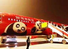 Flug mit Panda stockfotos
