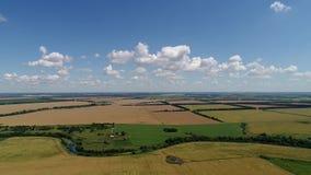Flug zum Brummen auf den grünen und gelben landwirtschaftlichen Feldern in Russland stock video footage
