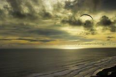 Fluga över havet Arkivfoton