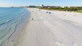 Fluga över stranden i siestatangent, Florida stock video
