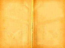 Fluga-blad av den gamla boken Royaltyfri Fotografi