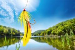 Fluga-fiske royaltyfria foton