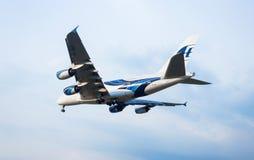 Fluga i den blåa himlen Arkivfoto