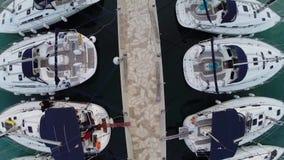 Fluga ovanför segelbåtar arkivfilmer