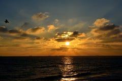 Fluga till soluppgången Fotografering för Bildbyråer