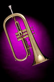 Flugalhorn Trumpet Isolated on Pink. A gold flugalhorn trumpet isolated against a spotlight pink background Stock Photography