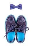 Flugan och moderna skor isoleras Royaltyfri Bild