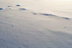 Flugbahnzeilen auf Schneeoberfläche Lizenzfreies Stockbild