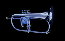 Flugelhorn Royalty Free Stock Photography