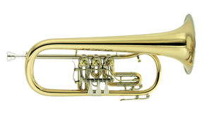 Flugelhorn. On white background Royalty Free Stock Photos