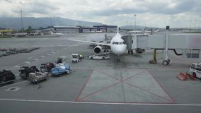 Flughafen-Personal mit Gepäck auf dem Förderband des Flugzeuges Gepäck wird auf einem Passagierflugzeug von den Arbeitskräften ge stock footage
