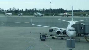 Flughafen-Personal mit Gep?ck auf dem F?rderband des Flugzeuges Gep?ck wird auf einem Passagierflugzeug von der Flughafenarbeitsk stock footage