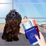 Flughafenwarteraum, Hund im Vordergrund Terminalinnen-, panoramisches Fenster, Flugzeug Zeit zu reisen vektor abbildung