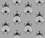 Flugor på grå bakgrund Royaltyfri Fotografi