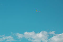 Flugwesen-Drachen lizenzfreie stockfotos