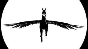 Flugwesen Pegasus Lebhaftes Schattenbild Video 4K lizenzfreie abbildung