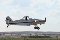 Flugwesenflugzeug Lizenzfreie Stockbilder