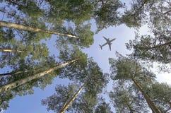 Flugzeug. Stockbilder