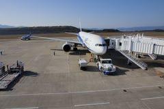 Flugzeug All Nippon Airwayss (ANA) Lizenzfreie Stockfotografie