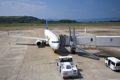 Flugzeug All Nippon Airwayss (ANA) Lizenzfreie Stockfotos