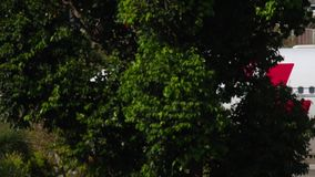 Flugzeug, das nach der Landung mit einem Taxi fährt stock video footage