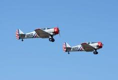 Flugzeuge Geico Skytypers im Flug Lizenzfreie Stockfotos