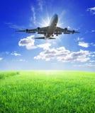 Flugzeugfliege über Gras Stockbild