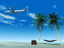 Flugzeugflugwesen über tropischem Strand. Stockbild