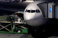 Flugzeugfrachtladen an Flughafen Istanbuls Ataturk IST Lizenzfreie Stockfotos