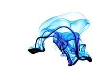 fluid błękitny forma obrazy stock