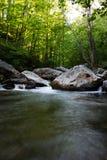 Fluindo a água na floresta Foto de Stock Royalty Free