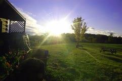 Fluindo a luz solar Imagem de Stock Royalty Free