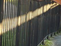 Fluindo a luz solar Imagens de Stock