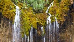 Fluir a cachoeira flui abaixo de uma rocha coberta com o musgo vídeos de arquivo
