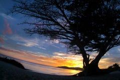 Fluir Carmel Foto de archivo libre de regalías