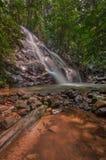 Fluir la cascada fotografía de archivo