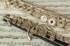 Fluit en piccolofluit Stock Afbeeldingen
