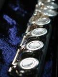 Fluit op blauw Royalty-vrije Stock Afbeelding