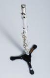 Fluit op fluittribune Royalty-vrije Stock Afbeeldingen